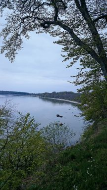 Rundweg auf der Insel Vilm mit tollen Aussichten